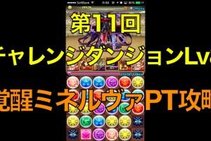 【パズドラ】第11回チャレンジダンジョンLv8覚醒ミネルヴァPT攻略【ノーコン】