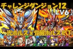 【パズドラ】チャレンジダンジョン12 LV6(回復なし) 光ホルスx覚醒ホルスPT
