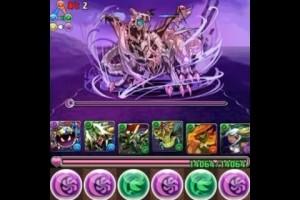 パズドラ【ドラゴンゾンビ降臨!地獄級】ドラウンジョーカー×緑ソニアPT ノーコン!攻略