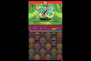 アンケートダンジョン14 木妖精 超級  赤オーディン×2PT【パズドラ】※Sランク