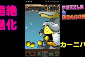 【パズドラ】35連☆超絶!進化カーニバルPuzzle & Dragons