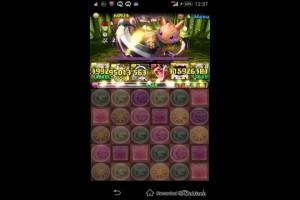 【パズドラ】黒の丼龍!超地獄級(Sランク)【アテナパ】
