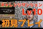 チャレンジダンジョン!Lv10【7×6マス】ツクヨミ=ドラゴンPT【パズドラ】※ノーコン