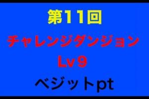 第11回チャレンジダンジョンLv9 ベジットで挑む!