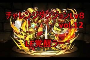 チャレンジダンジョン!Lv8 覚醒ラーPT【パズドラ】