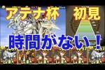ランキングダンジョン アテナ杯 イルムPT【パズドラ】※95.0%