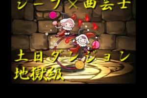 土日ダンジョン 地獄級 シーフ×曲芸士PT【パズドラ】※コイン2倍