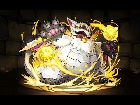 光の猫龍 重猫龍 超地獄級 大喬×超ベジットPT【パズドラ】※闇なし・ノーコン