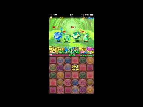 木の猫龍 森猫龍 中級 大喬×ベジータPT【パズドラ】※ノーコン